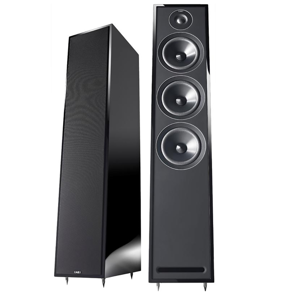 Acoustic Energy 305 (Gloss Black) - Angled